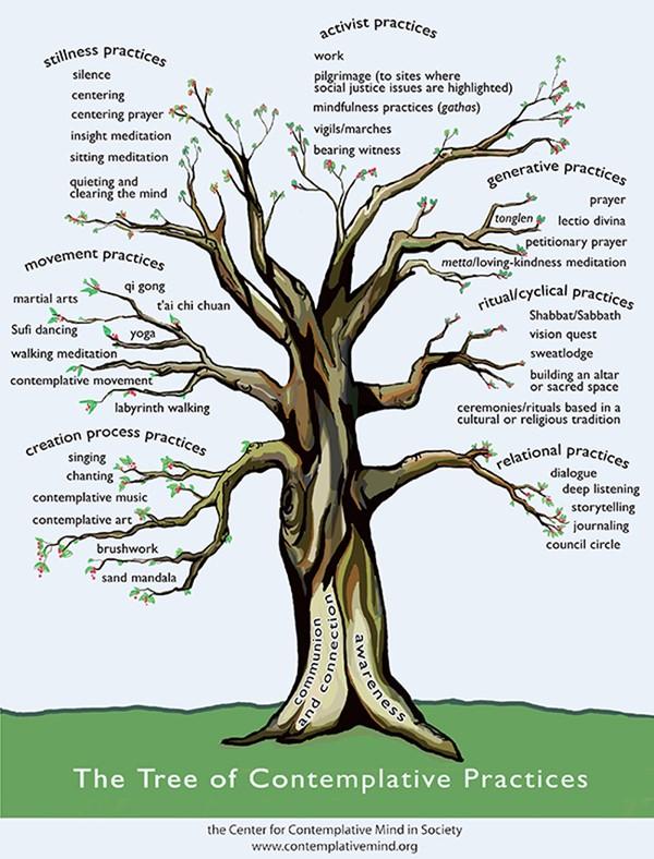 The Tree of Contemplattive Practices