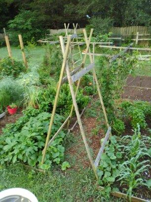 Bullet Journal Gardening Plan