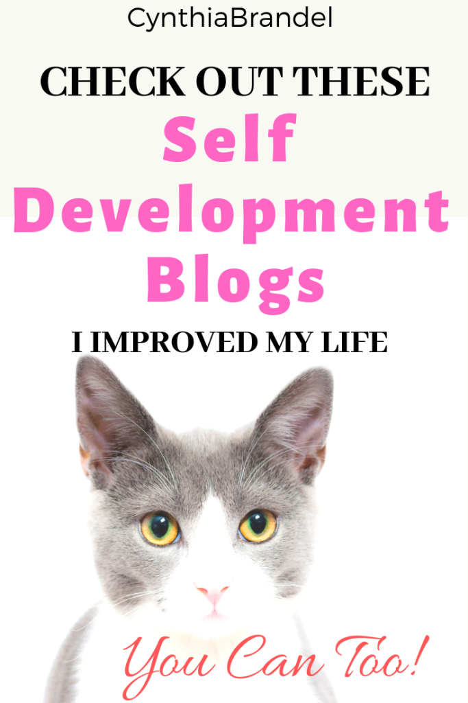 Self Improvement | Intentional Living | How To Create A Self Development Plan | Improve Your Standard Of Living | Self Development Blogs | Lifestyle