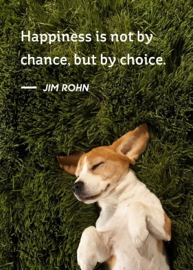 jim-rohn-inspirational-quote